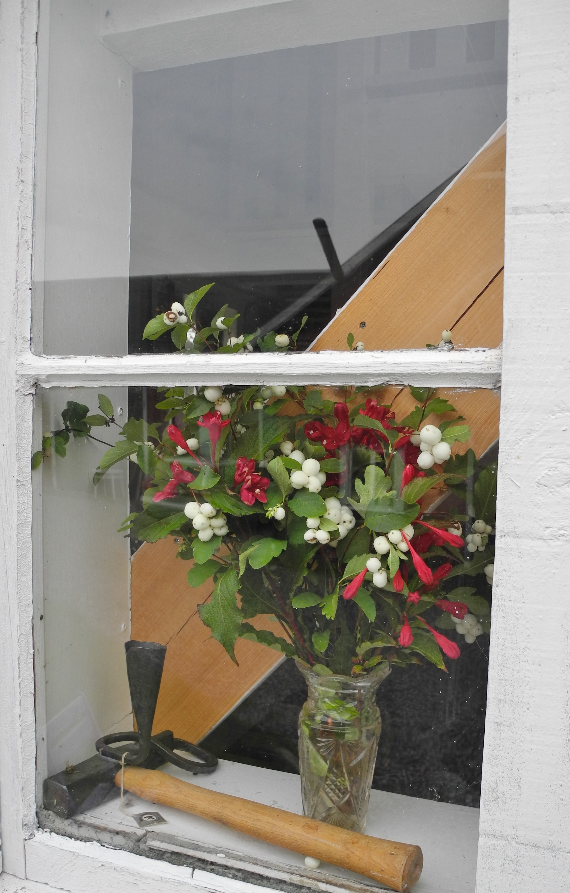 Fönster och blomma i garnboden