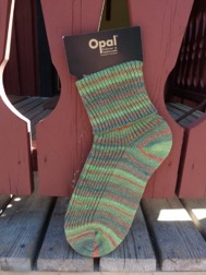 opal-sch-8-9202